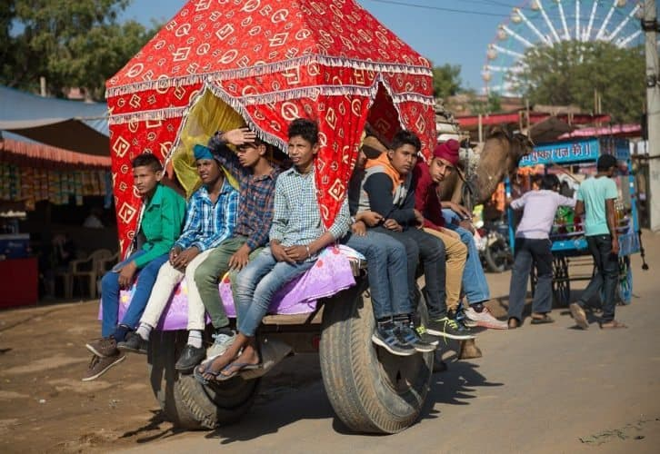 Young boys catching a ride at Pushkar on a bullock cart harnessed to a camel. Donnie Sexton photos.