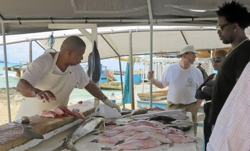 You can buy the freshest fish and take it to a local restaurant and they will cook it for you!