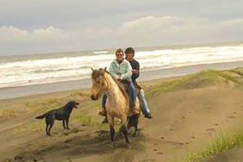 Horseback Riding in Chiloe, Chile