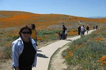 Antelope Valley Poppy Preserve: Fields of Color