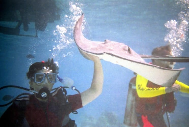 At Stingray City, you can pet and swim with these friendly creatures.