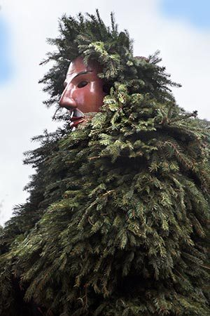 the pineman