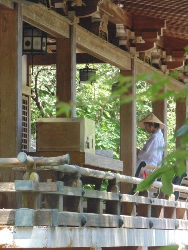 Henro saying sutras at Daishi-do, Daiho-ji 44