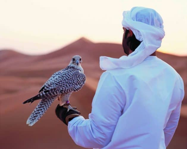 Abu Dhabi, 'Father of the Gazelle' 30
