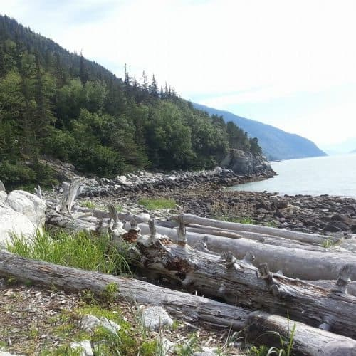 The coast of Alaska near Skagway. A great place to be a seasonal worker, says the author. Kay Vandette photos.