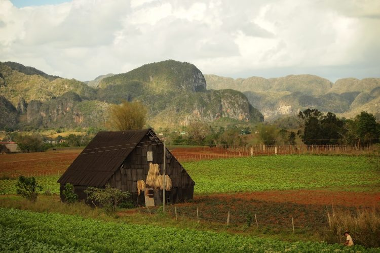 Tobacco barn in Vinales, Cuba. Jon Sliva photos.