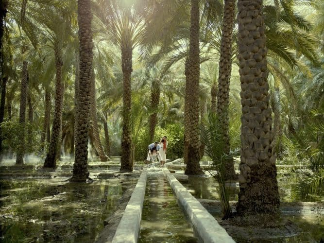 Abu Dhabi, 'Father of the Gazelle' 3