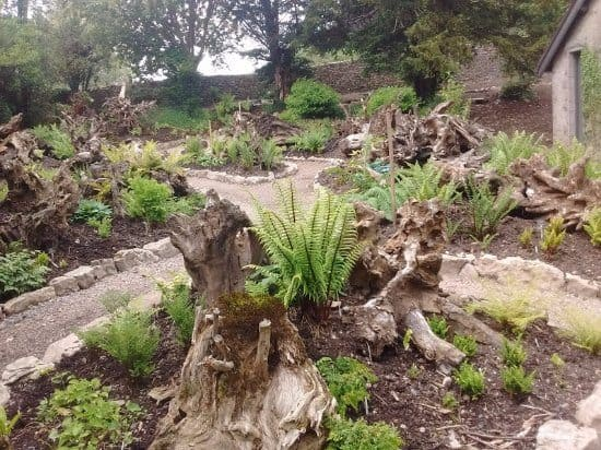 Sizergh Stumpery in Cambria, United Kingdom.