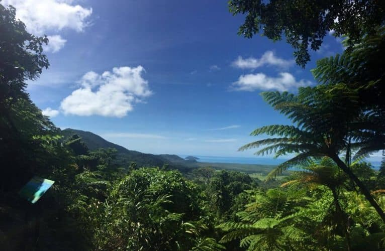 The view of Cape Tribulation from the Jindalba lookout area.