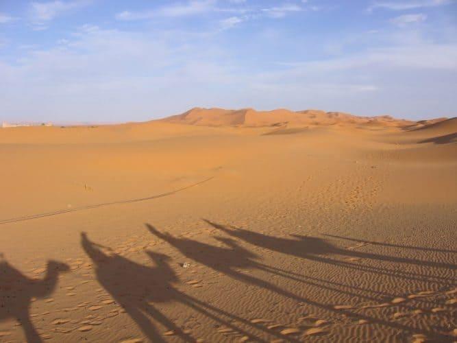A desert caravan in Morocco