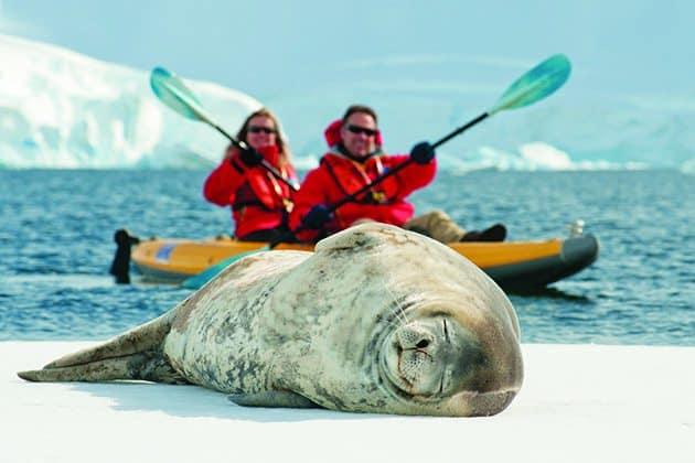 Antartica Cruises