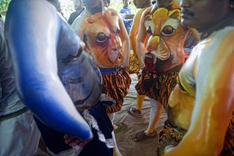 Participants painted to look like Tigers during the festival in Kerala state, South India.