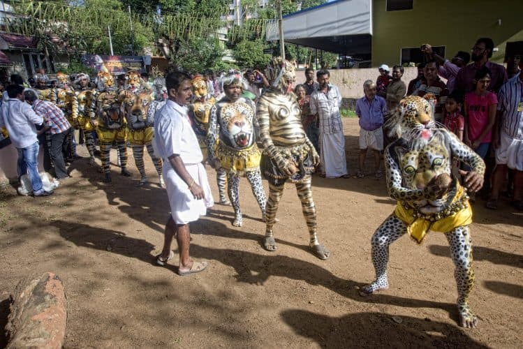 Participants posing as Tiger after offering coconut in the temple near the starting point as Dancing on the Beats of Music at Swaraj Round during Pullikali Festival.