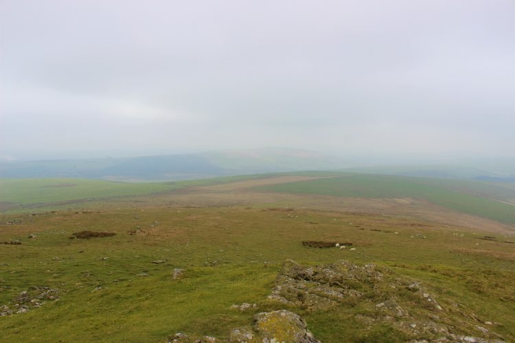 Scaling Heights, Foel Eryr