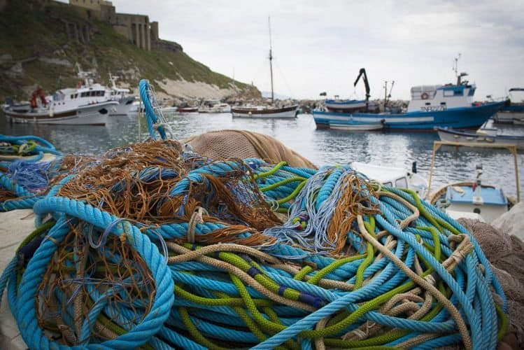 Fishing lines in Procida's active fishing boat marina.