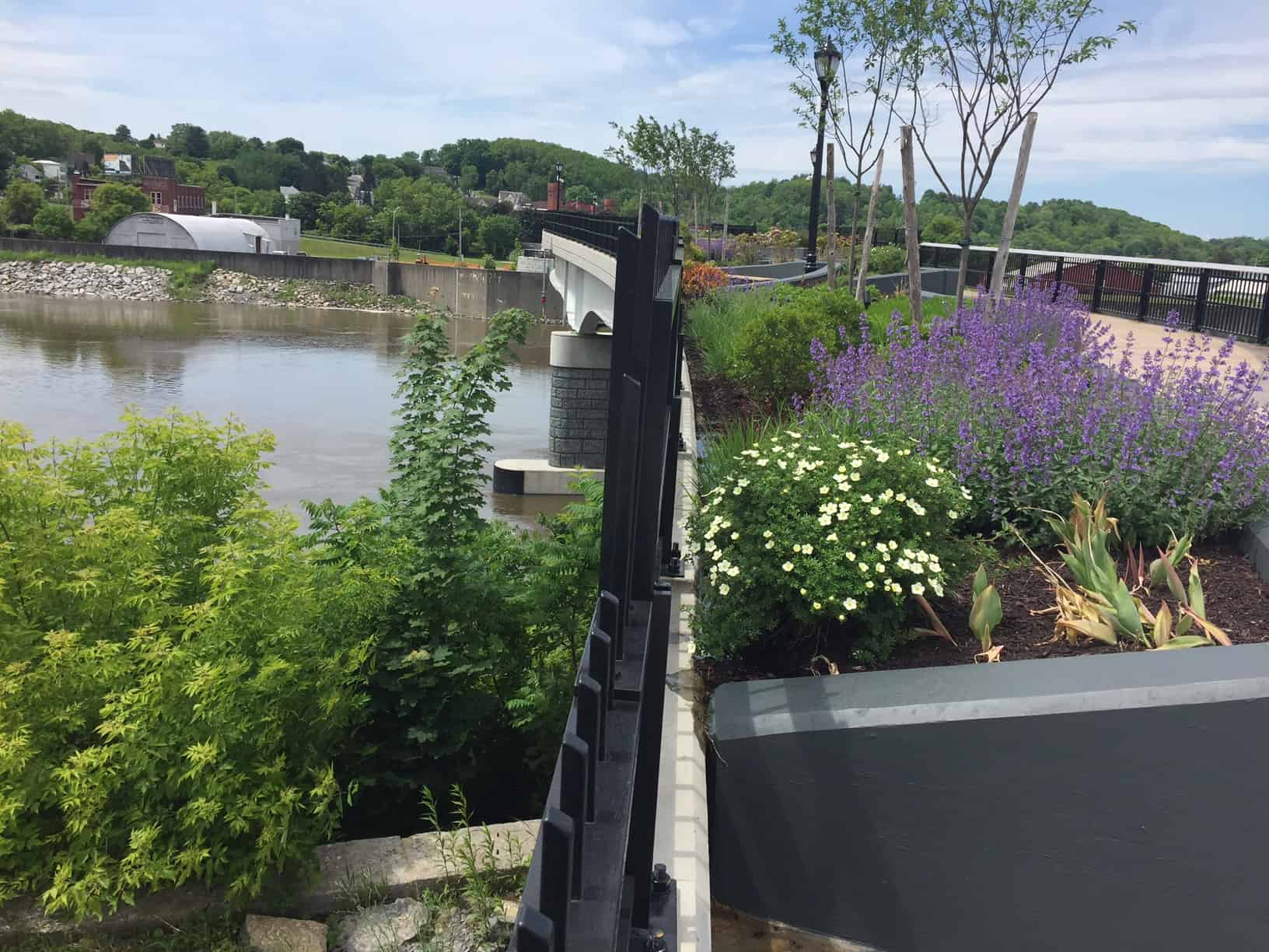 These are just a portion of The Mohawk Valley Gateway Overlook Pedestrian Bridge's flowers