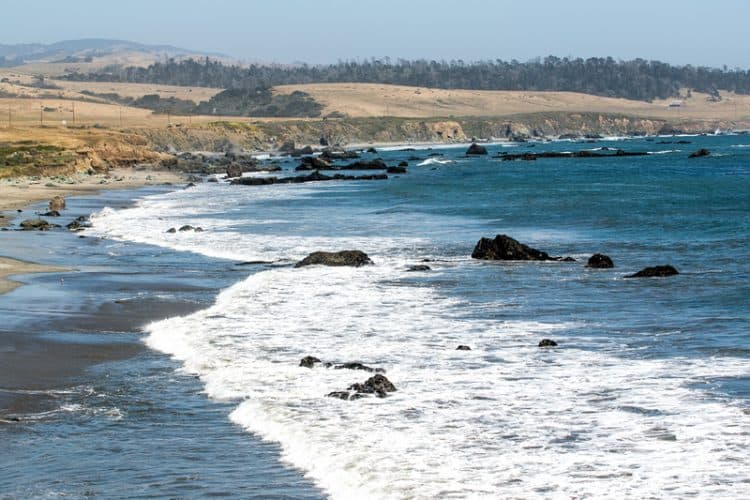 San Simeon State Beach: too cold to swim, but a beautiful place to spend a little time with elephant seals.