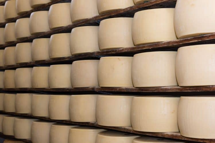 The wheels of cheese age and then will develop the crust and turn yellow.