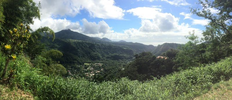 Dominica is a peaceful island, mountainous and lush. Caroline Sumners photos.