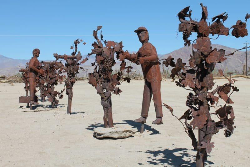 Braceros picking grapes.