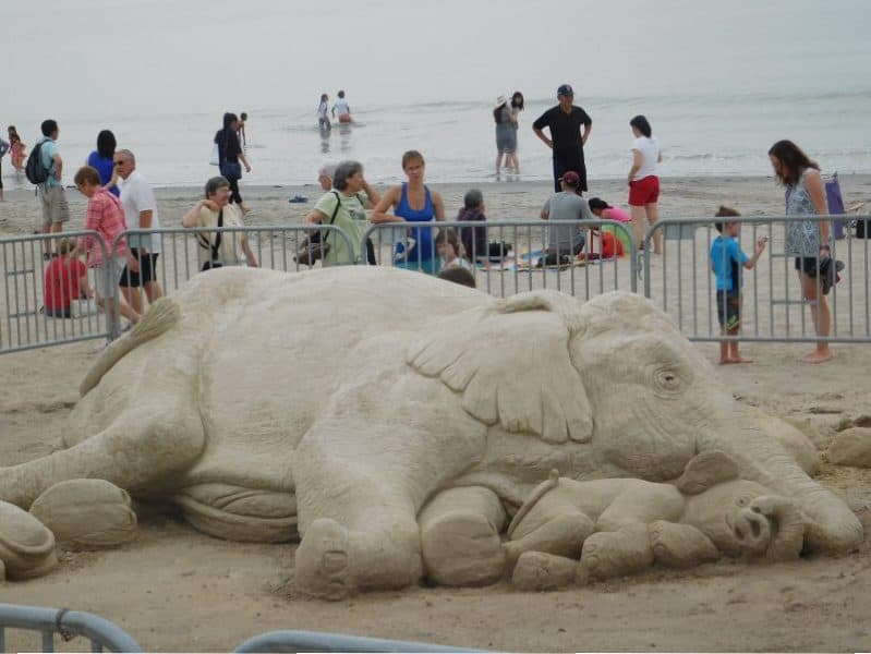 The crowds voted favorite...the elephant sculpture!