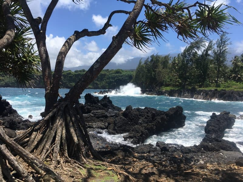 The incredible view at Keʻanae Peninsula