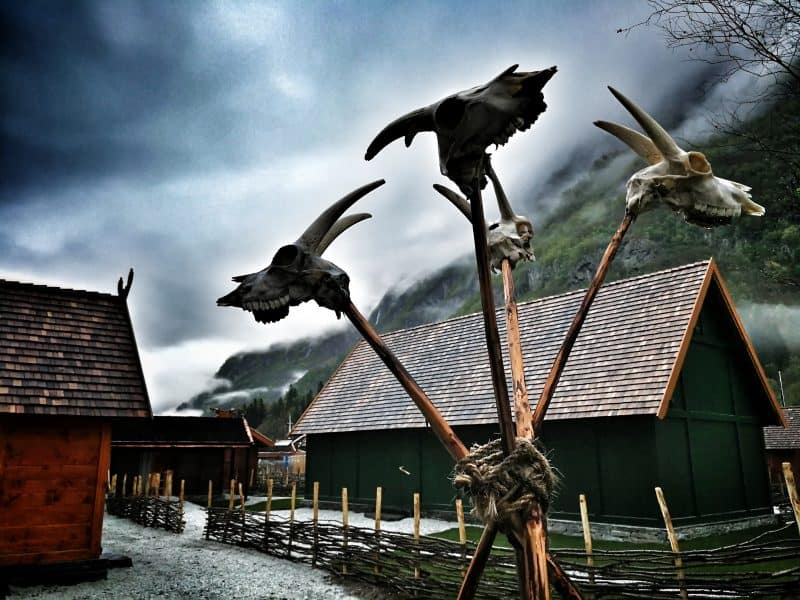 Cattle heads posted on spears outside of homes in the Viking village.