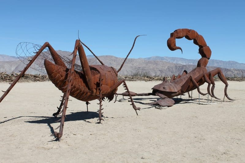 A sculpture of a giant Scorpion battling grasshopper in Borrego Desert State Park, San Diego, California. James Dorsey photos.