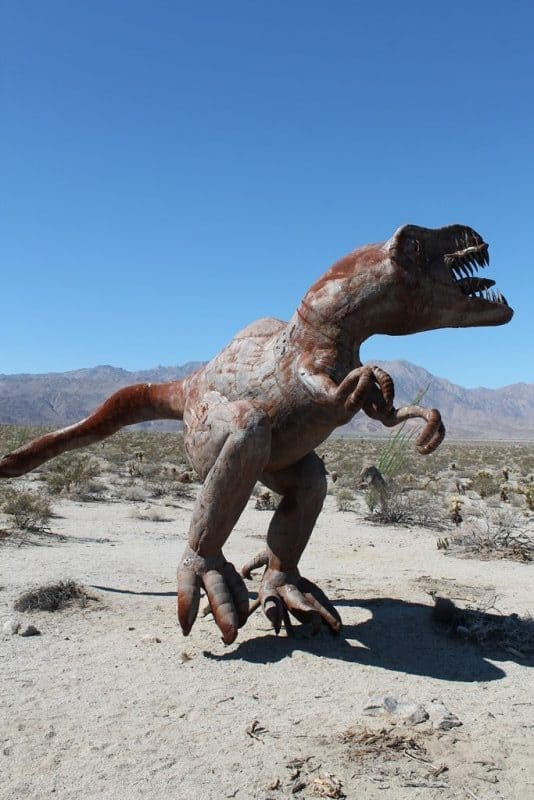 The T-Rex, another of the creatures who once roamed this desert landscape.