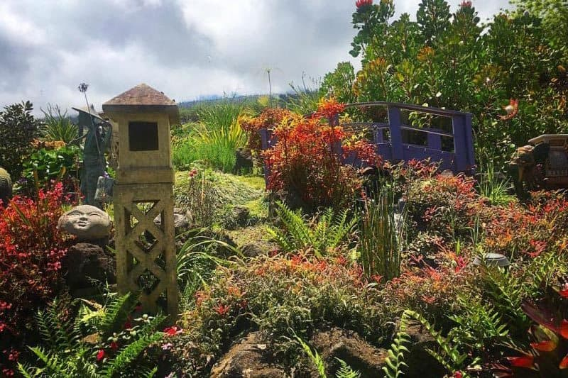 The lush Japanese garden at Aliʻi Kula Lavender Farm.