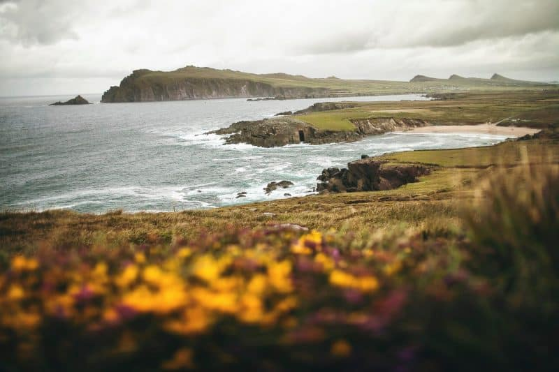 Dingle, Ireland: Greener than St. Patrick's Day