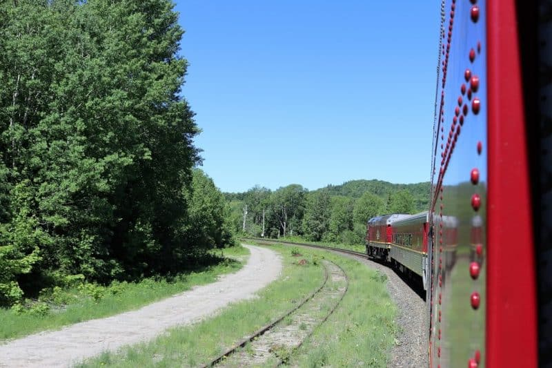 Along the journey, passengers try and spot wildlife like caribou, white-tailed deer, moose, wolves, wolverines, weasels, mink, otters, and bears along the tracks.