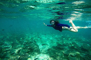Australia's Forgotten Coast