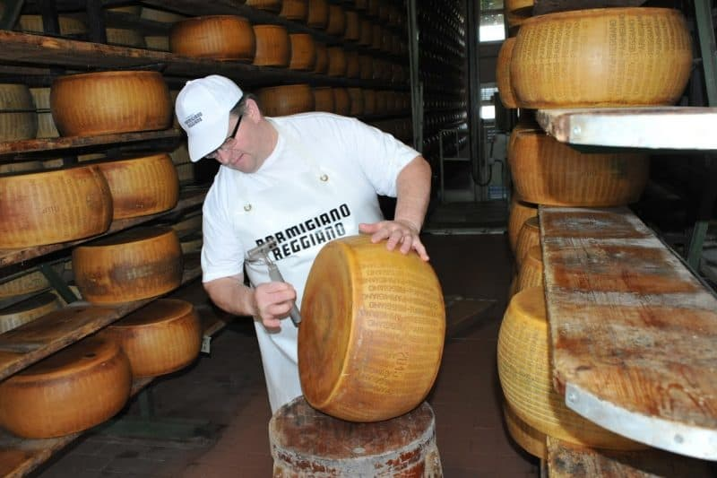Drumming for air pockets in an enormous wheel of parmesan cheese.