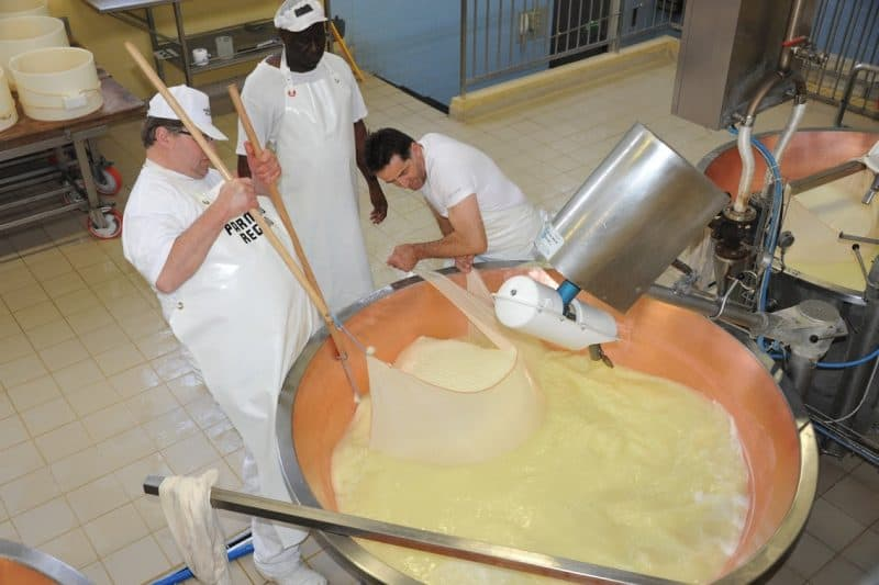 Cheesemakers at work in Parma, Italy.