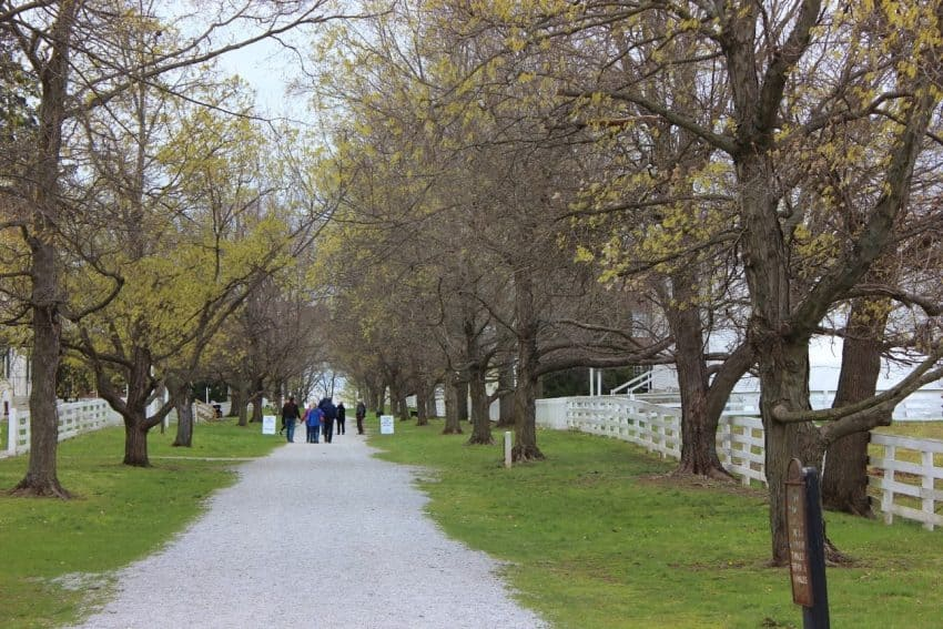 A Shaker walking path in Shakerville, Kentucky. Wynne Crombie photos.