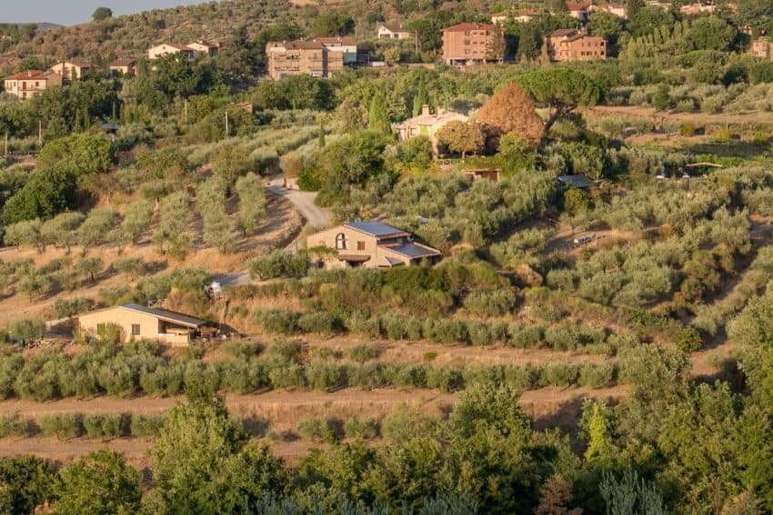 Overview of Il Fontanaro Organic Farm in Umbria, Italy. Ron Elledge photos.