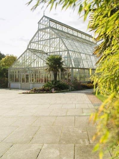 Couple enjoying their visit at National Botanic Gardens, Dublin