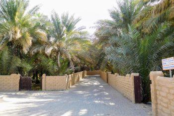 Al Ain date farm, outside of the city.