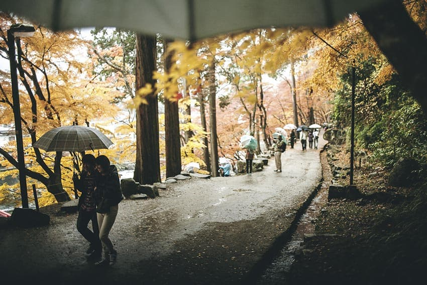 Happy in love under umbrellas and Japanese maple trees on this dreary Wednesday afternoon walking on slick pavement along a bubbling river. Central Japan has a quiet, peaceful beauty that drips from the trees and sinks into your skin.