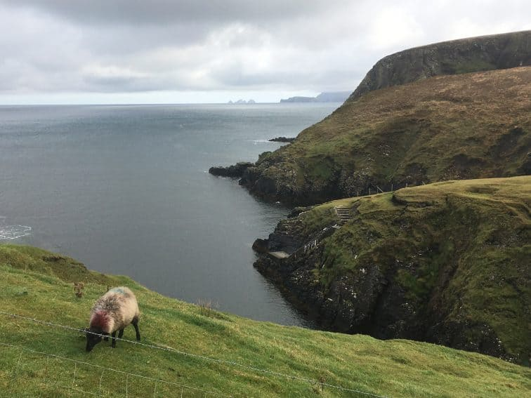 Views of the cliffs on Erris Head.