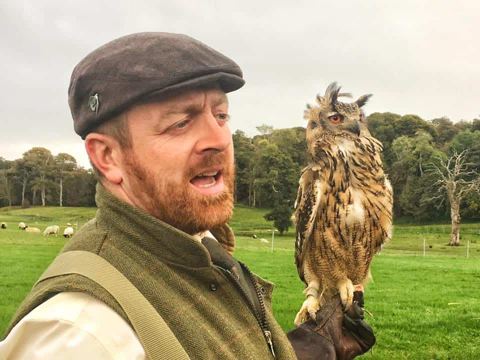 Jason Deasy of Apex Falconry with a hunting owl at Westport House.