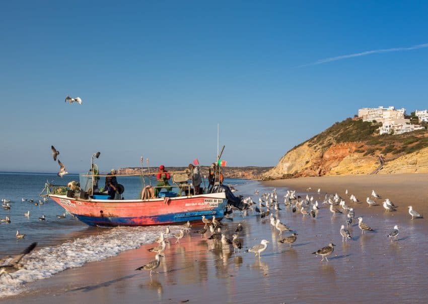 The marvelous beach in Salema, Portugal. Paul Shoul photos.