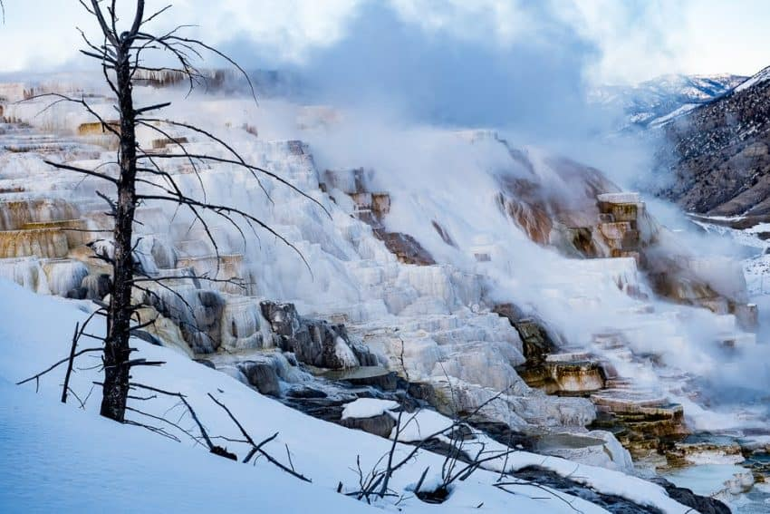 Mammoth Hot Springs Yellowstone National Park. Donnie Sexton photo.