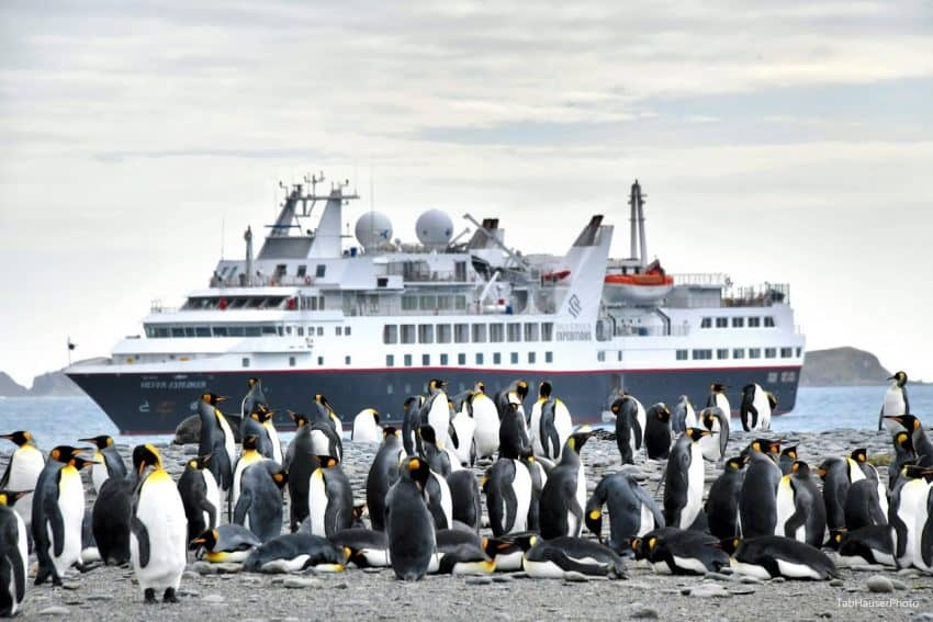 King penguins and the Explorer in Antarctica. Tab Hauser photos.