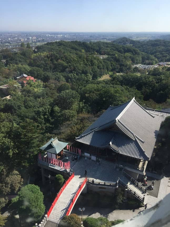 The view from the Kannon in Takasaki, Japan. Cathie Arquilla photos.