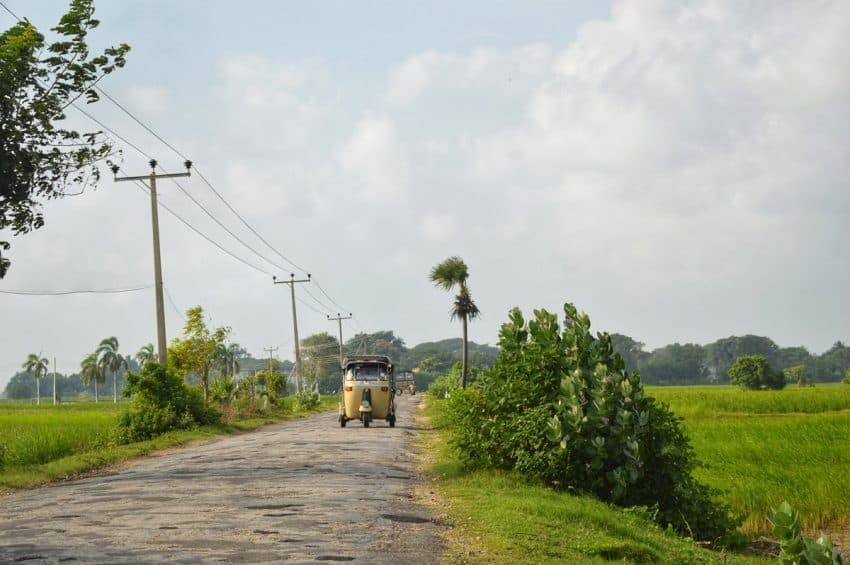 We drove past paddyfields, and endless barren lands in Jaffna. Tuk-tuks (trishaws) are a popular mode of transport in the island.