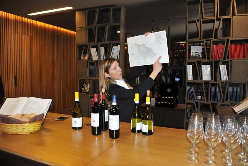 Wine tour guide explains the regions and grapes of the area | GoNOMAD Travel