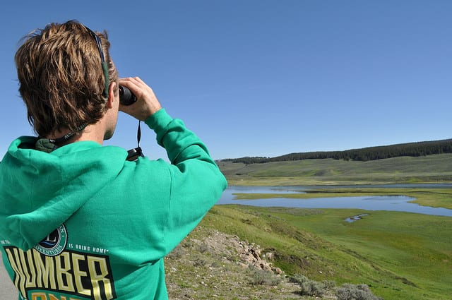 Viewing distant wildlife, maybe wolves, in Yellowstone National Park.