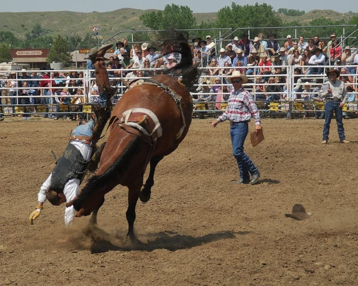 The annual Miles City Bucking Horse Sale, held the 3rd full weekend in May, is Montana's first rodeo of the season with an attendance of around 12,000 folks.